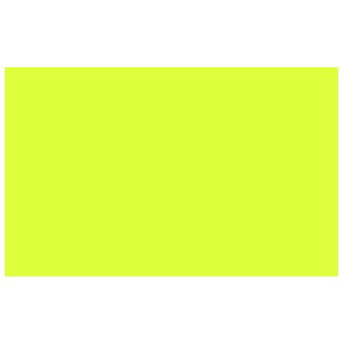 plesyr_logo